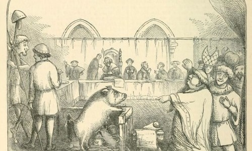 Animals Could Be Tried In Courts During Medieval Period